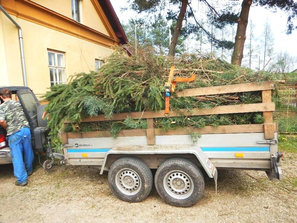 Štěpkování, odvoz a likvidace dříví, větví a jiného materiálu